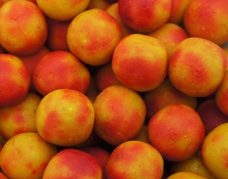 Classic Range – Tutti Frutti