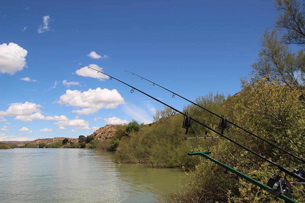Enter_the_Ebro_2016-0