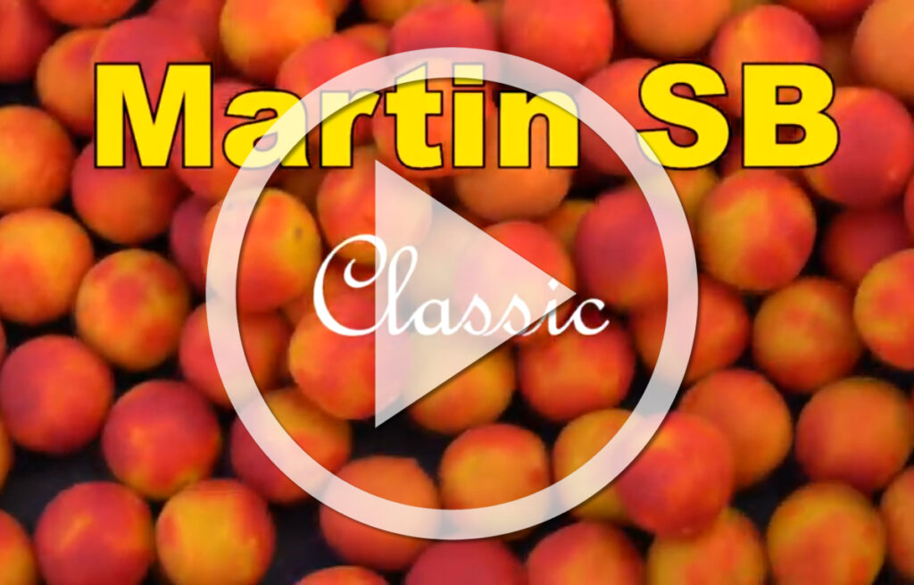 Martin SB Classic Range Tutti Frutti